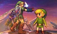 Toon Link y Link en el Campo de Batalla (2) SSB4 (3DS)