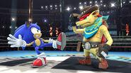Dillon junto a Sonic SSB4 (Wii U)