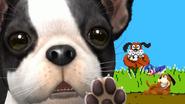 Créditos Modo Leyendas de la lucha Dúo Duck Hunt SSB4 (Wii U)