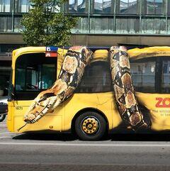 Copenhagen-Zoo-Snake-on-Bus-FINAL