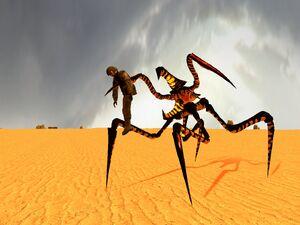 Arachnid warrior