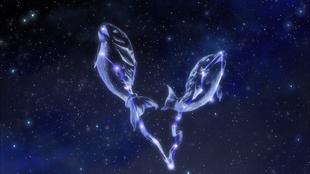 Constelação Peixes SG