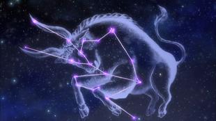 Constelação Touro SG
