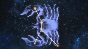 Constelação Câncer SG