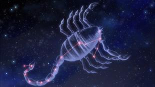 Constelação Escorpião SG