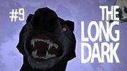 The long dark 9
