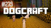 Dogcraft 239