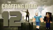 Crafting Dead 12
