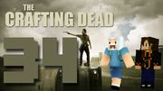 Crafting Dead 34