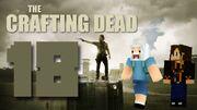 Crafting Dead 18