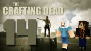 Crafting Dead 14