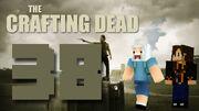Crafting Dead 38