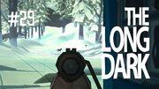 The long dark 29