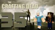 Crafting Dead 35