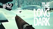 The long dark 42