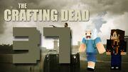 Crafting Dead 37