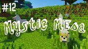 Mystic mesa 12