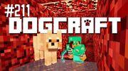 Dogcraft 211