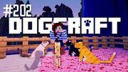 Dogcraft202