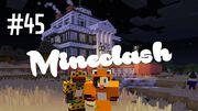 Mineclash 45