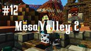 Mesavalley212