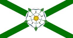 Vlag van Newport