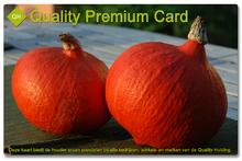 Quality Premium Card