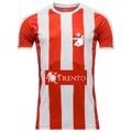 FC Hendrikstad shirt.png