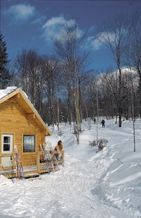 Chalet Mossiere