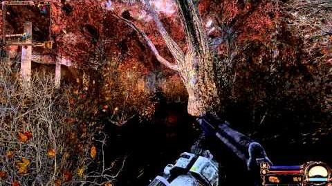 S.T.A.L.K.E.R. Clear Sky Mod Pack 2012 - Red Forest