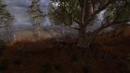 XrEngine 2012-06-16 16-36-23-68