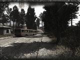 Martwe Miasto (Cień Czarnobyla)