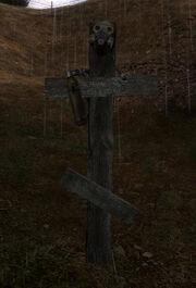 Fang's cross