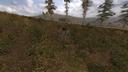 Пень у холма Тёмная долина ЧН
