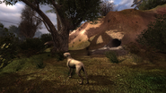 XrEngine 2012-04-23 14-44-18-09