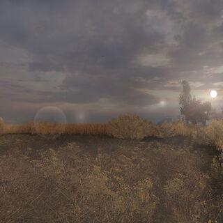 Panorama Wielkich Bagien