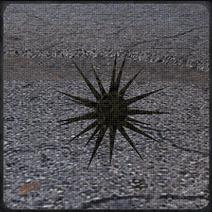 Кристальна колючка
