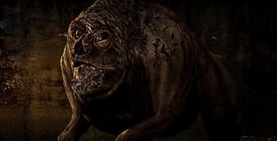 Stalker 2 had some wicked mutant design : stalker