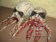 Bloodsucker heads