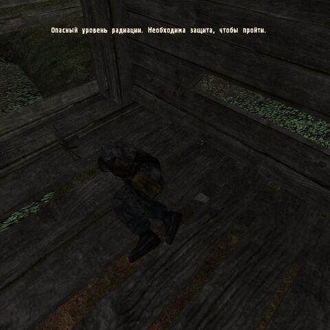 Ranny Szalony Stalker