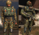 Guardian of Freedom suit