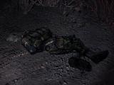 Zabity Wojskowy na Bagnach