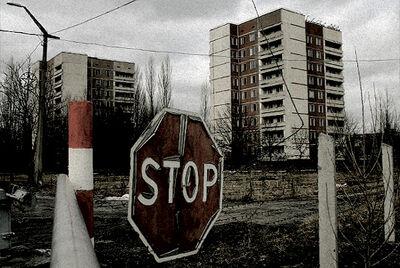 Czarnobyl-hodowla-rzepaku