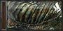 IU-Вставки из магниевых пластин (Ветер свободы)
