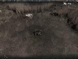 Obozowisko pośród kamieni