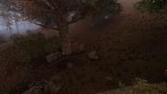 XrEngine 2012-06-16 16-36-54-14