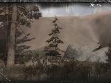 Południowy płaskowyż