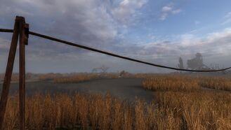 Marsh13