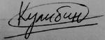 Подпись3