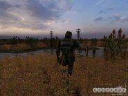SHOC Swamps Military 2